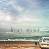 Blue Muse Live von Blue Muse Jazz