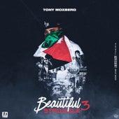 Beautiful Struggle 3 by Tony Moxberg