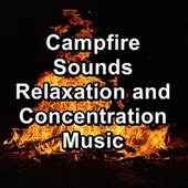 Campfire Sounds Relaxation and Concentration Music by Spa Relax Music