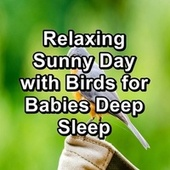 Relaxing Sunny Day with Birds for Babies Deep Sleep fra The Birdsongs