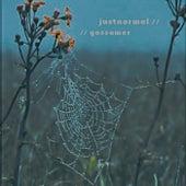 Gossamer by Justnormal
