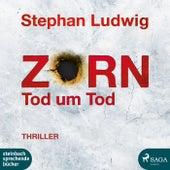 Zorn (Tod um Tod) by Stephan Ludwig