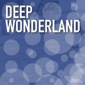 Deep Wonderland de Various Artists