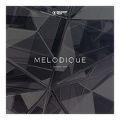 Melodique, Vol. 1 de Various Artists