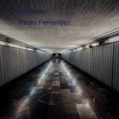 Electroman (Pedro Fernandez) von Pedro Fernandez