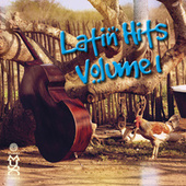 Latin Hits, Vol. 1 by Various Artists