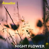 Night Flower by Acoustica