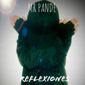 Reflexiones von MR Pande