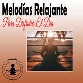 Melodías Relajante Para Disfrutar El Dia de Musica Relajante