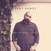 Say You Won't Let Go de Troy Ramey