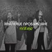 Хваление Пробуждане (Live) de Awakening Church