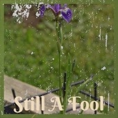 Still A Fool by Various Artists