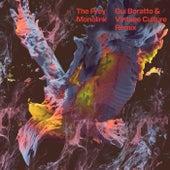 The Prey (Gui Boratto & Vintage Culture Remix) by Monolink