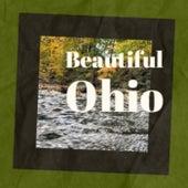 Beautiful Ohio de Various Artists