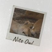 Nite Owl de Various Artists