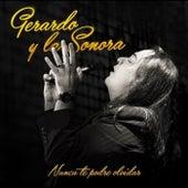 Nunca Te Podre Olvidar fra Gerardo y La Sonora