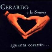 Aguanta Corazón by Gerardo y La Sonora
