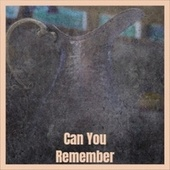 Can You Remember by Various Artists