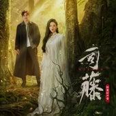 Si Teng Ying Shi Yuan Sheng Dai von Various Artists