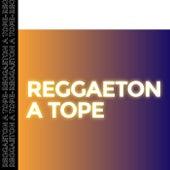 Reggaeton a Tope de Various Artists