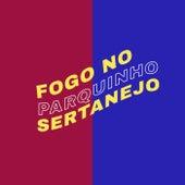 Fogo no Parquinho Sertanejo de Various Artists