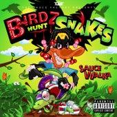 Birdz Hunt Snakes de Sauce Walka