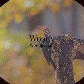 Woody Woodpecker von Various Artists