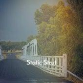 Static Strut von Various Artists