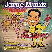 Mi Pajarito de Jorge Muñiz