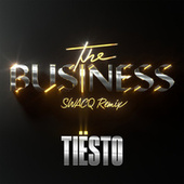 The Business (SWACQ Remix) by Tiësto