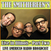 Live in Illinois - Part Two (Live) de The Smithereens