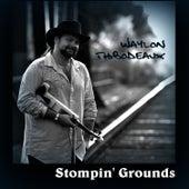 Stompin' Grounds by Waylon Thibodeaux
