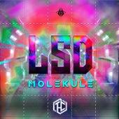 L.S.D Molekule de T.H.C.