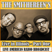 Live in Illinois - Part One (Live) de The Smithereens