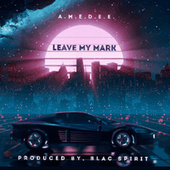 Leave My Mark by Amedee