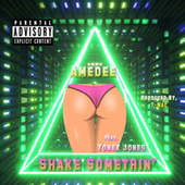 Shake Somethin' by Amedee