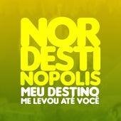 Nordestinopolis - Meu Destino Me Levou Até Você (Ao Vivo) von Arraial Balão Dourado