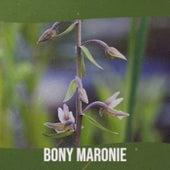 Bony Maronie de Various Artists