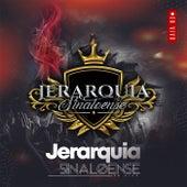 jerarquia sinaloense (Live) de Jerarquía Sinaloense