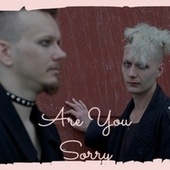 Are You Sorry by Various Artists