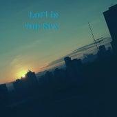 LoFi in the Sun von Various Artists