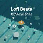 Lofi Beats 2021: Muzică lo-fi pentru relaxare sau studiu by Various Artists