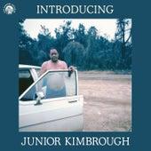 Introducing Junior Kimbrough by Junior Kimbrough