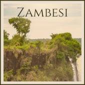 Zambesi de Various Artists