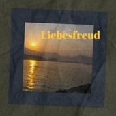 Liebesfreud by Various Artists