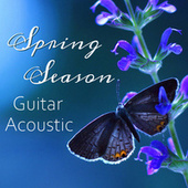 Spring Season Guitar Acoustic by Antonio Paravarno