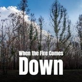 When the Fire Comes Down von Various Artists