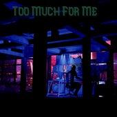 Too Much For Me von Public Enemy