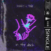 In The Dark by Mu-Ray