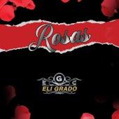 Rosas fra Eli Grado